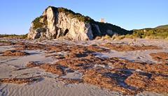 "Questa è ""Maremma"" - This is ""Maremma"" (Jambo Jambo) Tags: panorama landscape parcoregionaledellamaremma parco park alberese grosseto maremma maremmacountryside maremmatoscana toscana tuscany italia italy nikond5000 jambojambo spiaggia beach collelungo torredicollelungo"