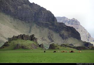 Landscape near Ásólfsskáli, Iceland
