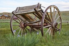 Abandoned Wagon (cheryl strahl) Tags: california bodiestatepark bodie nightphotography wagon abandoned wildirises flowers