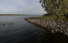 _MAL2983 (Markoliini) Tags: sea meri havet kivi sten stone