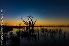 IMG_5455 (biglaptogs) Tags: barmera lakebonney riverland sa states sunsetsunrise
