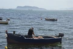 Pescatore nel porticciolo di Sant'Erasmo (costagar51) Tags: palermo sicilia sicily italia italy natura mare anticando bellitalia