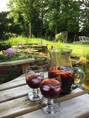 Summertime (gwendolen) Tags: garden sangria pond pinkflamingo summertime tuin vijver groen rood wijn zomer