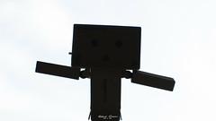 #Danbo #Silhouette #Macro Mondays (graser.robert) Tags: closeup danbo germany macro macromondays mondays nikon nikond7100 robertgraser silhouette lighttime reinstädt thüringen deutschland de