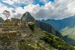 Machu Picchu -_DSC0694