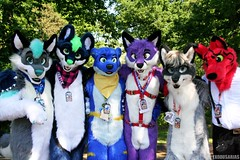 Confuzzled 2017 Friday 26th of May (Exodus Arias) Tags: confuzzled 2017 10 years most excellent adventure cfz convention fursuits fursuiting furries furry fandom fur fluff fluffy animals costume fox otter goat husky sieopup antony birmingham hilton metropole
