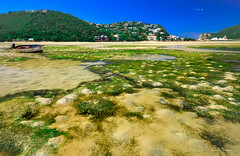 Forever Changed (swazileigh/ Langman Lightscapes) Tags: knysna southafrica changedview fires destroyed easterncape gardenroute beach oceanscape vacationdestination tourist tourism low tide boat nikon nikond800 water blueskies green ancientforest