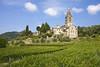 (AWD Alessandro Vecchi) Tags: basilica fieschi liguria chiesa church belltower campanile romanico cogorno vigneti vineyards alessandrovecchi