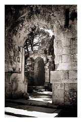 Temple of Diana, Nimes, France #3 (Colin Clarke~) Tags: temple ruins nimes diana temleofdiana leica m6ttl summaritm 35mm f35 ilford fp4