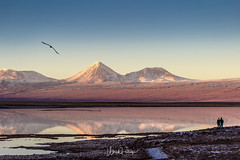 Sunset at Laguna Tebinquiche (upeters) Tags: 2017 chile sanpedrodeatacama regióndeantofagasta cl