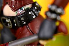 "Harley Quinn details (Garcia ""Imagética"" Junior) Tags: batman actionfigure collection twoface deathstroke harleyquinn arkham coleção duascaras toy photography fotografia brinquedo"