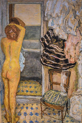 Pierre Bonnard - The Full Length Mirror, 1910 at Carnegie Museum of Art - Pittsburgh PA (mbell1975) Tags: pittsburgh pennsylvania unitedstates us pierre bonnard the full length mirror 1910 carnegie museum art pa pit pitt pgh penn penna usa alleghanycounty alleghany museo musée musee muzeum museu musum müze museet finearts fine arts gallery gallerie beauxarts beaux galleria painting impression impressionist impressionism french cmoa