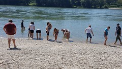 Donauauen3abJuni2017-015