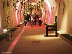 underground-tunnel-floraart-instalation_3
