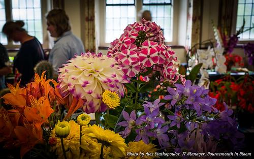 2017 Summer Flower Show 49
