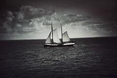 (soleá) Tags: soleá carmengonzález travel traveling netherlands holland outdoors sailing water nautical sea boat ship waddenzee