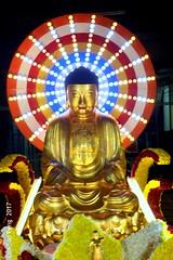 Wesak Night  8.5.17 026 (lspeng) Tags: wesaknight8517 wesak buddha triple blessed day year cockerel 2017