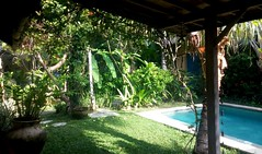 Private Seminyak villa garden, Bali (scinta1) Tags: indonesia bali seminyak villa garden pool green peaceful tranquil restful tropical trees palms leaves flowers bohemian private plants water relaxing shade shadows