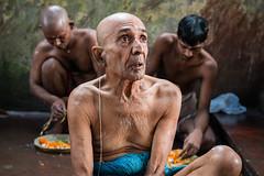 Devotee (SaumalyaGhosh.com) Tags: people devotee old man street streetphotography portrait color india tarpan kolkata nikon d610 theindiatree