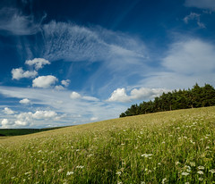 Summer Meadow (Peter Quinn1) Tags: fairweatherclouds skyscape cloudscape derbyshire hathersage meadow haymeadow traditionalmeadow summer stanage stanageedge coggerslane