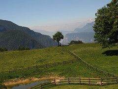 Mountains are sacred (aniko e) Tags: truden trodena altoadige südtirol view mountains mist tree meadow summer hike hiking green etschtal brentagroup
