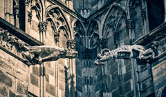 Competing gargoyle pair at Cologne Cathedral (mary_hulett) Tags: cologne rivercruise gargoyle travel colognecathedral 2017 viking rhineriver cathedralofstpeter europe waterspouts church