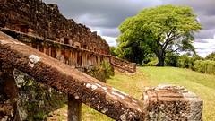 Ruinas de San Ignacio, Misiones, Argentina. (mariano.risso) Tags: ruinassanignacio nikond3100 misiones mesopotamia