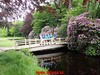 """2017-06-10         Baarn 36 Km  (121) • <a style=""""font-size:0.8em;"""" href=""""http://www.flickr.com/photos/118469228@N03/35182446396/"""" target=""""_blank"""">View on Flickr</a>"""