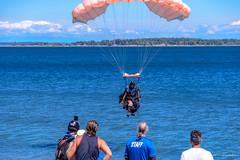 DSC_3905.jpg (Cameron Knowlton) Tags: air show victoria nikon parachuter captiabcteapartyoakbayteapartyoakbay2017parachutewillowsbeachcanadaskydivingcapitalcityskydivingskydivingd610air showcapital city skydivingcaptia oakbayteaparty oakbay skydiving teaparty willowsbeach 2017 bc canada d610 parachute captiabcteapartyoakbayteapartyoakbay2017parachutewillowsbeachcanadaskydivingcapitalcityskydiving