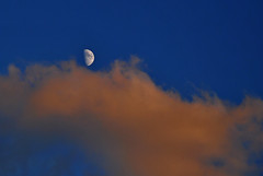 moon adrift on cotton candy (atomicshark) Tags: moon adrift sky clouds fluffy beautiful cottoncandy blue nikon colorful astrophotography weather long island dream phase nature nikkor cloud above heavens