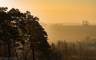 Der Tag erhebt sich aus dem Nebel