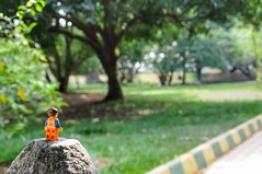 A little walk in the park never hurts! :-) (parik.v9906) Tags: macro 365project 365days 365 nature relax stone climb park walk legography d90 nikon minfigures minifigure legos lego