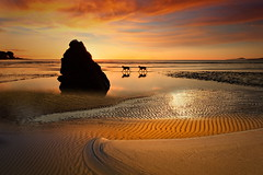 Il silenzio della sera (Zz manipulation) Tags: art ambrosioni zzmanipulation natura sera tramonto landscape sea animali amici cani rosso