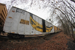 FB (NJphotograffer) Tags: graffiti graff trackside track railroad rail art freight train bench benching boxcar box car fb crew bums fucking bananas galaxe wholecar
