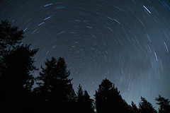 Star Trails (Susan Colosimo) Tags: startrails astrophotography nightsky nightscape summersky polaris northstar earthsrotation