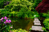 Nature in Westerham. England. (ost_jean) Tags: nature england reflections flowers water nikon d5200 tamron sp af 1750mm f28 xr di ii vc ld ostjean colors
