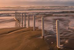 DSC_9493 (Daniel Matt .) Tags: sunset sunsetcolours sunsets irishlandscape landscape landscapephotography ireland natgeo nature greennature beach sunsetsandsunrise aroundtheworld