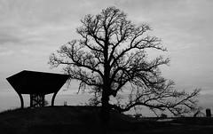 Proton Pagoda, the Dark Side (Michael J. Linden) Tags: architecture michaeljlinden michaellinden mikelinden n9bdf nikon d7000 nikond7000 ferminationalacceleratorlaboratory fermilab fnal departmentofenergy doe batavia highenergyphysics hep particleresearch nationallaboratory monochrome blackandwhite bw silhouette