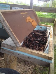 Wormery made from old bath (StopFoodWaste) Tags: wormery compost composter composting mike