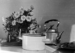 Soviet Dishes (sabpost) Tags: retro vintage scan film bw ussr ссср пленка сканирование скан негатив россия ретро old rare scans russia russian found photo siberia сибирь soviet dishes tableware dinnerware