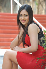 Indian Actress Nikesha Patel Hot Sexy Images Set-2 (37)