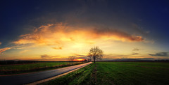 Hungarian skies CXVII. (Zsolt Zsigmond) Tags: nature sunset ruralscene landscape sky dusk cloudsky road outdoors sun field summer scenics grass blue cloudscape tree nonurbanscene sunlight sunrisedawn everypixel
