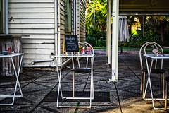 communication (Tatterededges) Tags: communication cafe streetphotography grungy reserved pigeon melbourne dogwood52 dogwood2017 dogwoodweek27