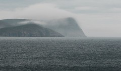 Lands End (2) (deanspic) Tags: deadmansbay capespear mist fog gull g3x newfoundland