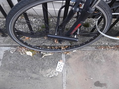 29th June 2017 (themostinept) Tags: 8ofclubs playingcard bicyclewheel cigarettebutt pavement london greatpercystreet kingscross wc1 islington leaves