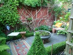 Patio garden - 8 years on (Sue1454) Tags: patio garden boxhedge seats rugs urli waterlillies