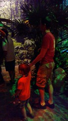 """Paul and Daddy Look at Dinosaurs at the Field Museum • <a style=""""font-size:0.8em;"""" href=""""http://www.flickr.com/photos/109120354@N07/35567691321/"""" target=""""_blank"""">View on Flickr</a>"""