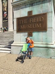 """Paul at the Field Museum • <a style=""""font-size:0.8em;"""" href=""""http://www.flickr.com/photos/109120354@N07/35567695991/"""" target=""""_blank"""">View on Flickr</a>"""