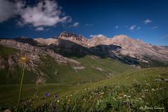 Alpages (Pierrotg2g) Tags: montagne mountain paysage landscape nature alpes alps alpi nikon d90 tokina 1228
