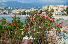 Menton and its beaches (jackfre 2 (away for a few days)) Tags: france menton mediterraneansea beaches spring
